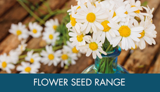 Flower Seed Ranges