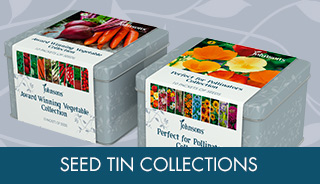Seed Tin collections